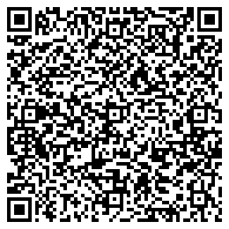 QR-код с контактной информацией организации ИП Шкляревич