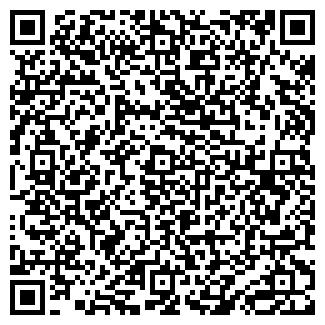 QR-код с контактной информацией организации Другая НиколАрт