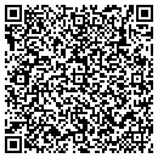 QR-код с контактной информацией организации СВЕТЛА, ООО