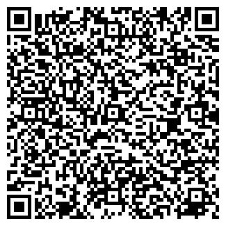 QR-код с контактной информацией организации ИП Лысиков