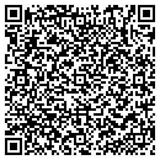 QR-код с контактной информацией организации ГОЛУБИН, ЧП