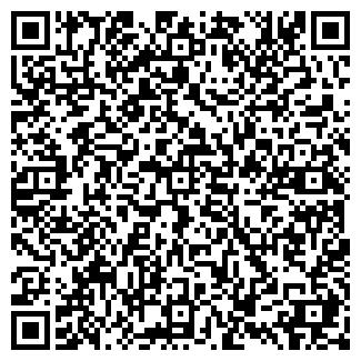QR-код с контактной информацией организации Другая ИП Караневич