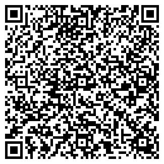 QR-код с контактной информацией организации Субъект предпринимательской деятельности Rainbow