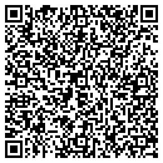 QR-код с контактной информацией организации NewGalaxyArt