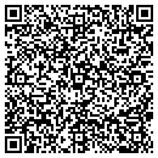 QR-код с контактной информацией организации ACE LTD