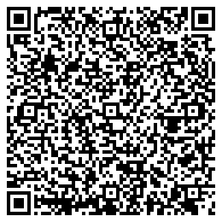 QR-код с контактной информацией организации ЕЛЬЧИЩЕВ, ИП
