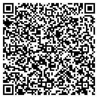 QR-код с контактной информацией организации Solo Art
