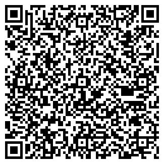 QR-код с контактной информацией организации Dsgroup