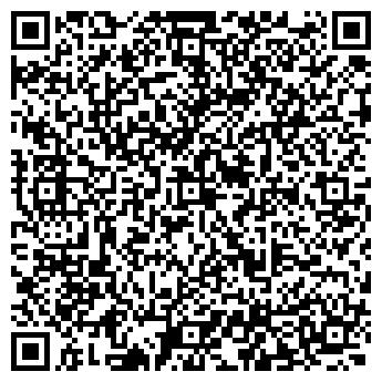 QR-код с контактной информацией организации Студия Елены Сторчак, ЧП