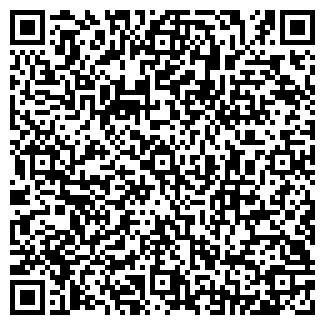 QR-код с контактной информацией организации Топеха, СПД