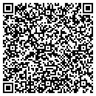 QR-код с контактной информацией организации DreamLife, ООО