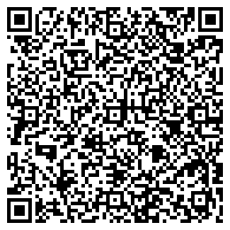 QR-код с контактной информацией организации Игорь, ЧП