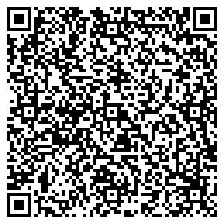 QR-код с контактной информацией организации Клин Лайт, ЧП
