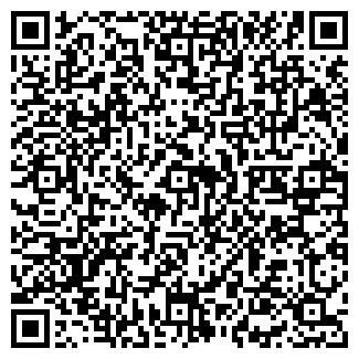 QR-код с контактной информацией организации Свет Чистоты,
