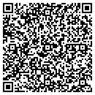 QR-код с контактной информацией организации Той-Думан, ИП