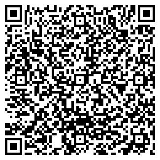 QR-код с контактной информацией организации Рубин, ИП