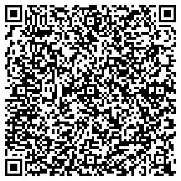 QR-код с контактной информацией организации Aysel (Айсел), ИП