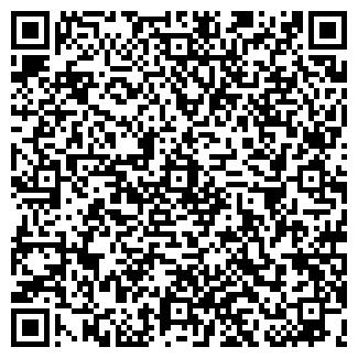 QR-код с контактной информацией организации Алена, ТОО