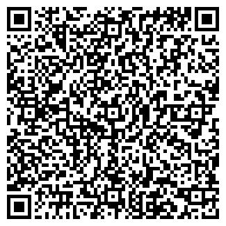 QR-код с контактной информацией организации Маруся, ИП
