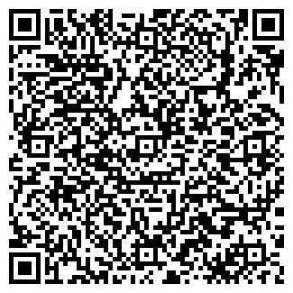 QR-код с контактной информацией организации Чистюля, ИП