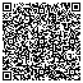 QR-код с контактной информацией организации Infinity, ИП