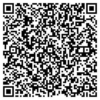 QR-код с контактной информацией организации Турар, ИП