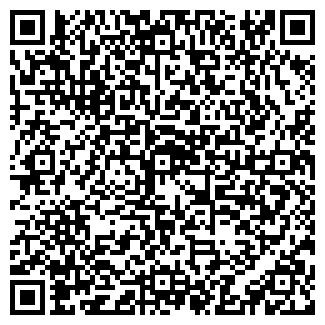 QR-код с контактной информацией организации Лала, ИП