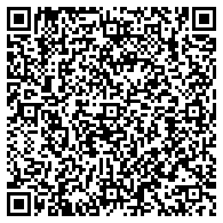 QR-код с контактной информацией организации Стамкул, ИП