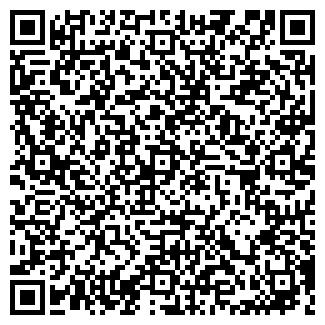 QR-код с контактной информацией организации Несибе, ИП