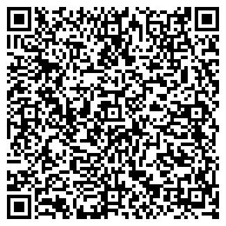 QR-код с контактной информацией организации Частное предприятие ИП Шатыгин