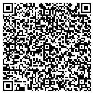 """QR-код с контактной информацией организации ИП """"LEDFORD"""""""