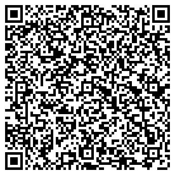 QR-код с контактной информацией организации Виза в Америку, ЧП ( Go to AMERICA )