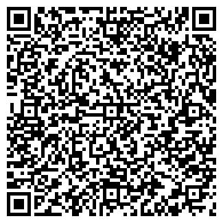 QR-код с контактной информацией организации Визит, Компания