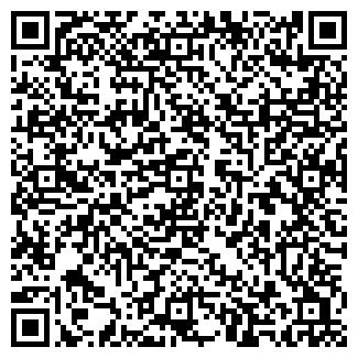 QR-код с контактной информацией организации Такси Леди, ЧП