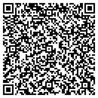 QR-код с контактной информацией организации Такси Сова, ЧП