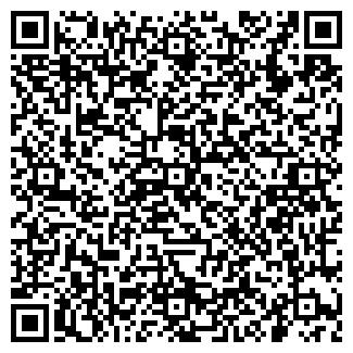 QR-код с контактной информацией организации Такси Иван, ЧП