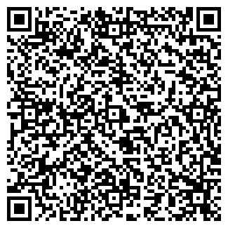 QR-код с контактной информацией организации Такси Fly, ЧП