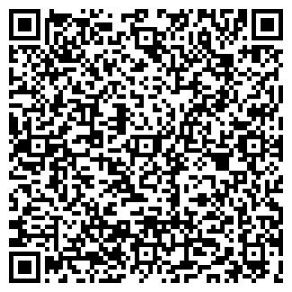QR-код с контактной информацией организации Диана, ИП