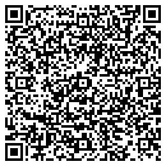 QR-код с контактной информацией организации Фотограф, ИП