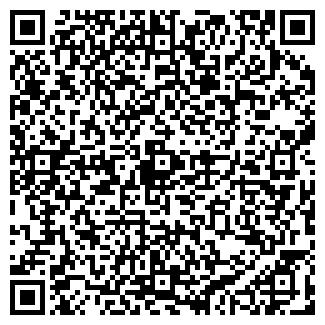 QR-код с контактной информацией организации Pilot-avto