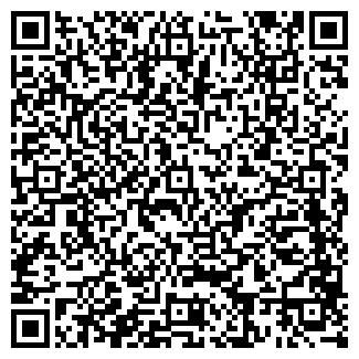 QR-код с контактной информацией организации ИП Minibus