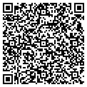 QR-код с контактной информацией организации Светлаков Ю. В., ИП