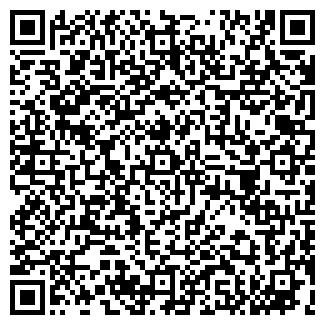 QR-код с контактной информацией организации ИП Vista Rent