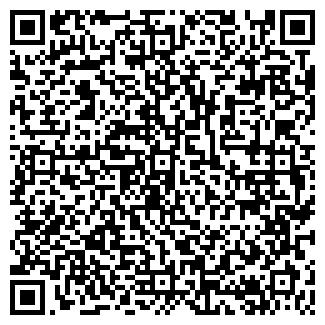 QR-код с контактной информацией организации ИП Шелег В.П.