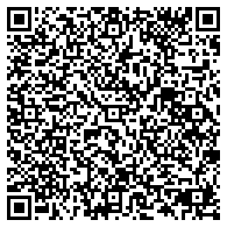QR-код с контактной информацией организации Premierline