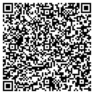 QR-код с контактной информацией организации Черный ИП
