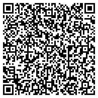 QR-код с контактной информацией организации Частное предприятие Ромашка