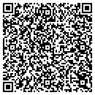 QR-код с контактной информацией организации ИП Alfa