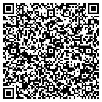 QR-код с контактной информацией организации Small Engines