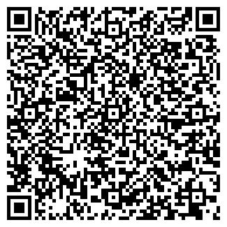 QR-код с контактной информацией организации BLS, ООО